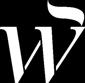 logo centro winner